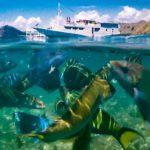 Positive Travel Host Wanua Adventures10 150x150
