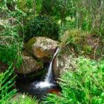 fazenda catucaba atividades caminhadas cachoeira 150x150