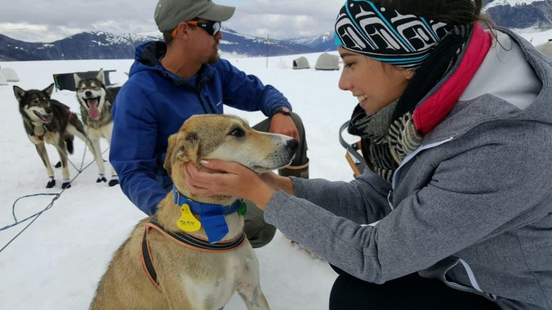 Positive Travel Activity Guide Dog Sledding Camp, girl taking care of a dog