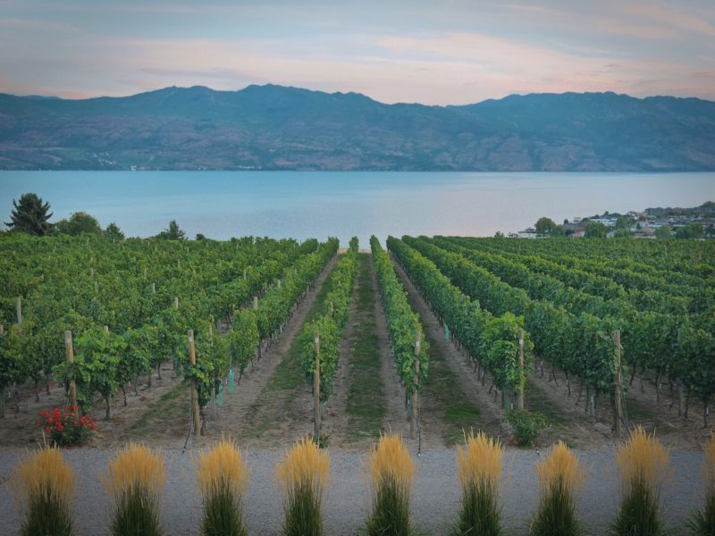 Positive travel guide BC Okanagan Wine Country
