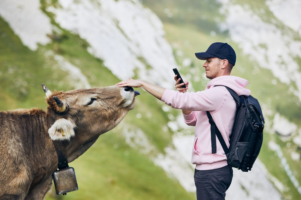 Positive Travel Sustainable Travel Taking a photo of a Swiss Cow