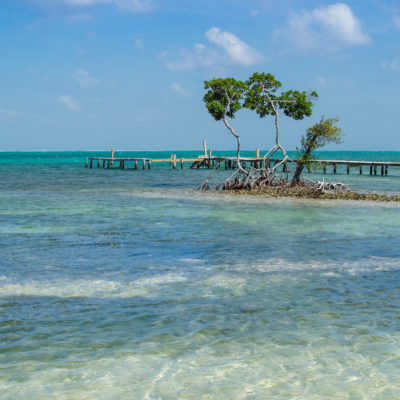tropical-vacation-crystal-clear-blue-water-in-belize_t20_jRdQvv